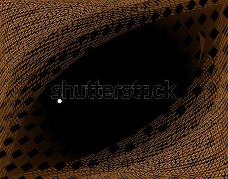 Réptil olho abstrato textura pele Foto stock © Tawng