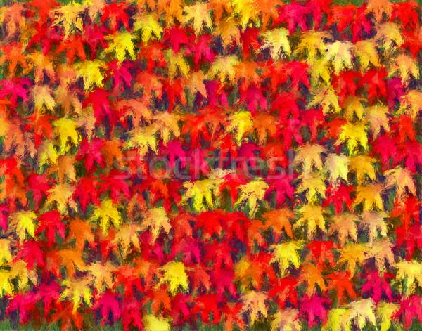 Sonbahar Yaprakları Boyama Akçaağaç Yaprakları Sonbahar