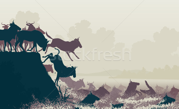 Wildebeest river crossing Stock photo © Tawng