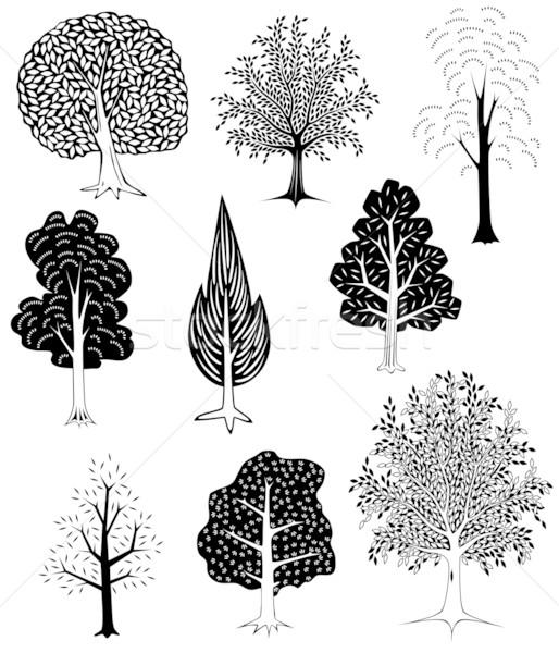 Bomen ingesteld eenvoudige vector boom Stockfoto © Tawng