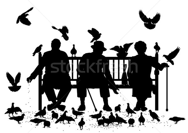 Pigeon feeders Stock photo © Tawng