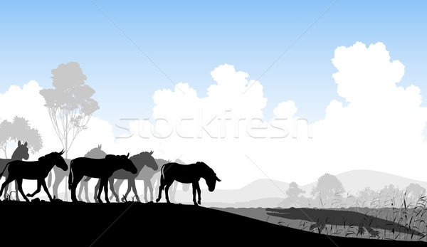 Watering hole Stock photo © Tawng