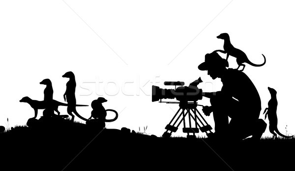 Wildlife cameraman Stock photo © Tawng