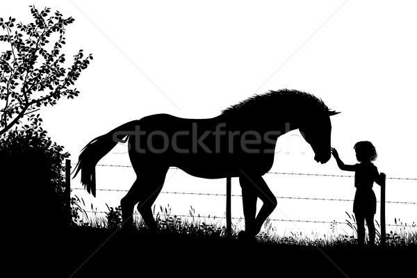 Girl and horse Stock photo © Tawng