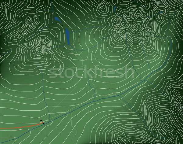Topographic map Stock photo © Tawng