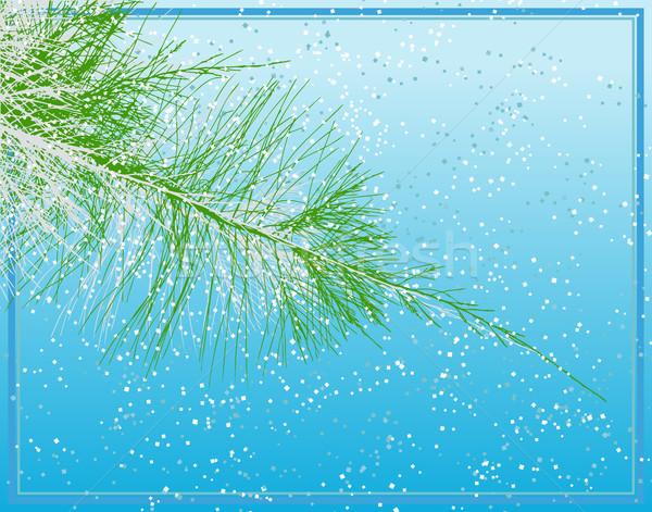 Noël sapin arbre de noël branche Photo stock © Tawng