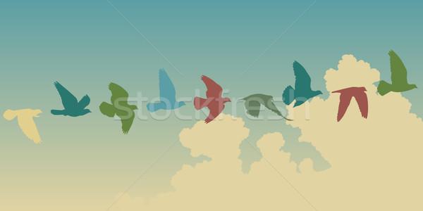 голубь полет вектора Flying Сток-фото © Tawng