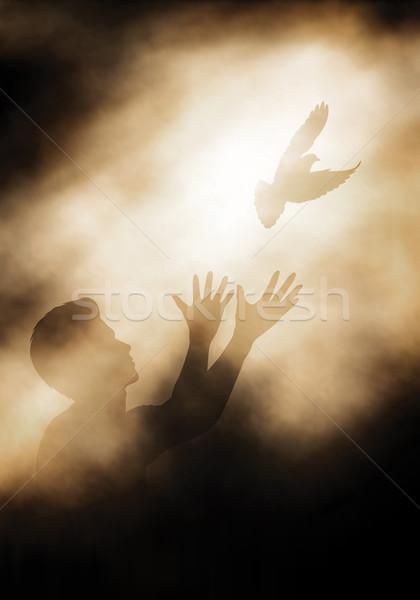 голубя человека свет градиент Сток-фото © Tawng