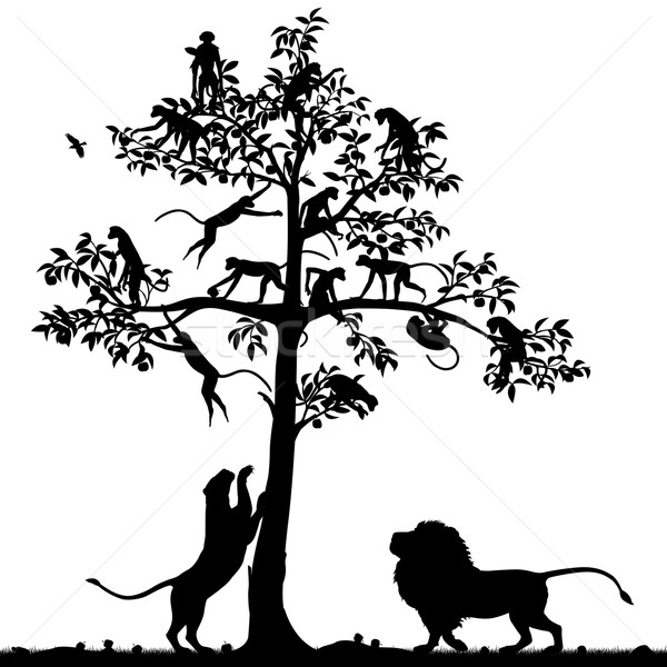 Monkeys and lions Stock photo © Tawng