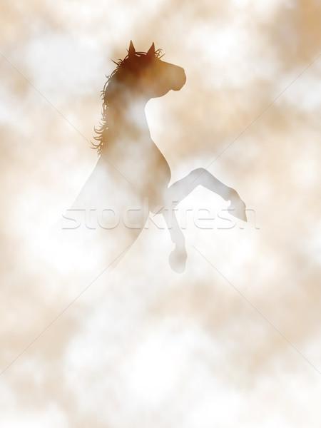 Rearing horse Stock photo © Tawng