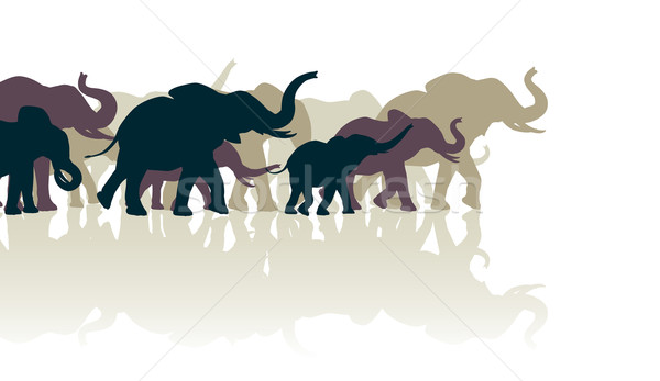 Elefánt nyáj szerkeszthető tükröződések család csoport Stock fotó © Tawng