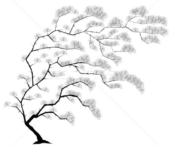 Tree Stock photo © Tawng