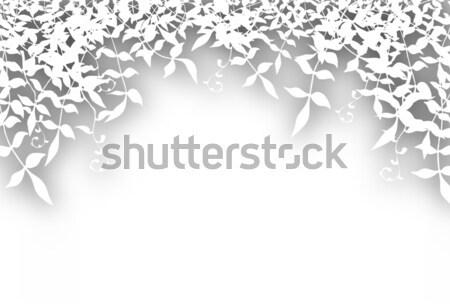 Stock photo: Bushy cutout