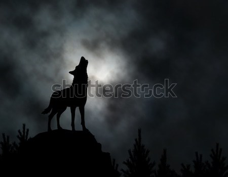 Howling wolf Stock photo © Tawng
