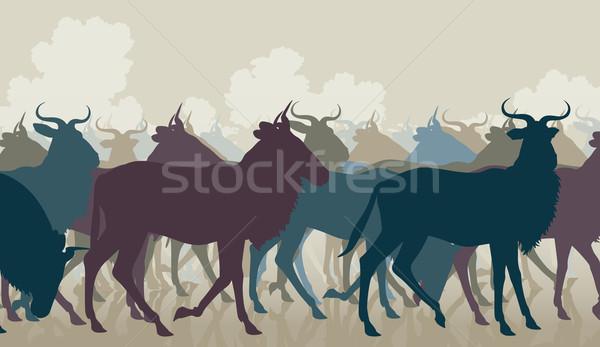 Wildebeest herd Stock photo © Tawng