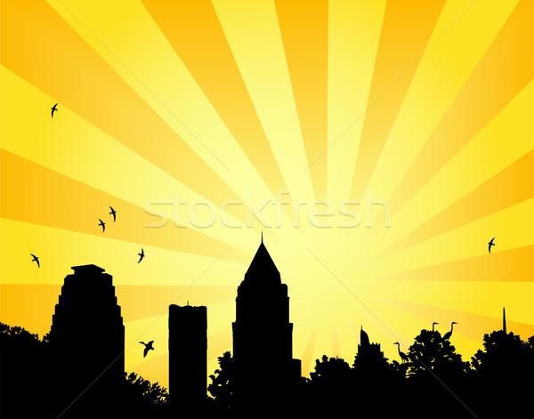 City park sun Stock photo © Tawng