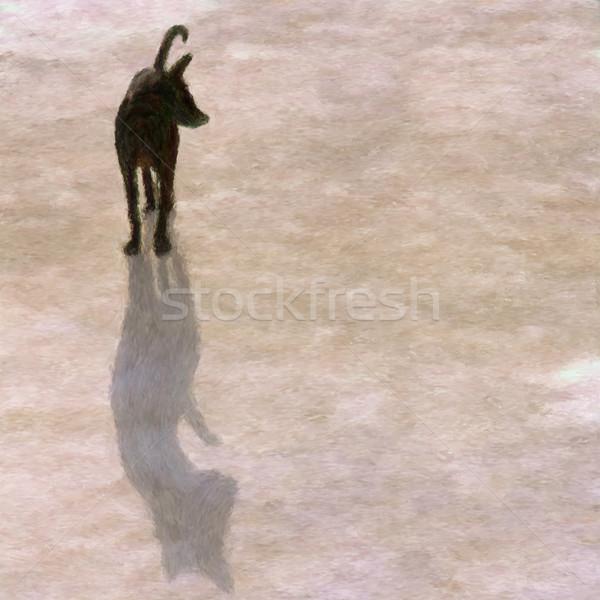 Shadow dog Stock photo © Tawng