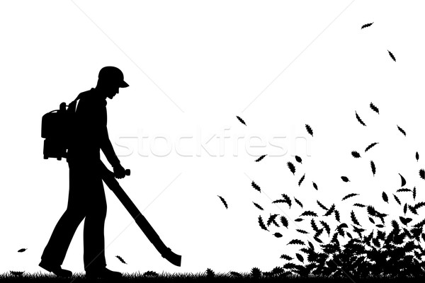 Leaf blowing Stock photo © Tawng