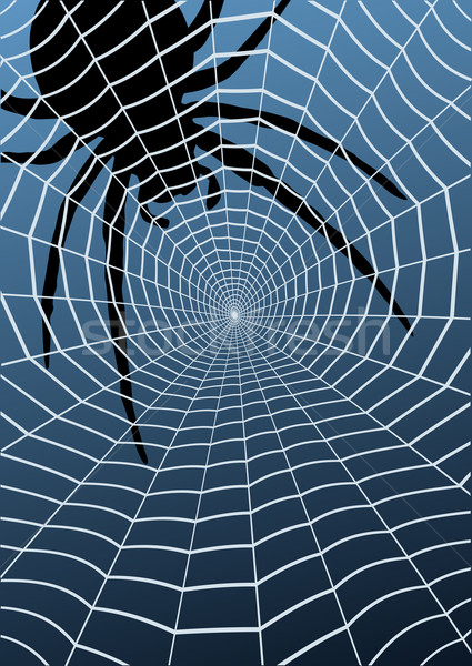 Toile d'araignée nature web araignée soie Photo stock © Tawng