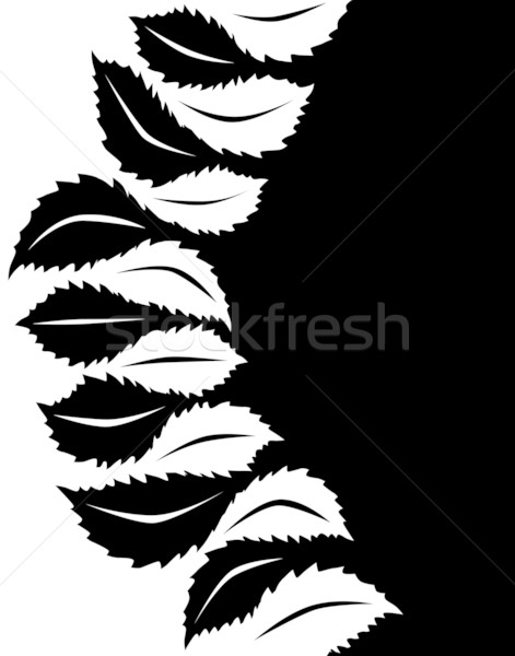 Leaf to leaf Stock photo © Tawng