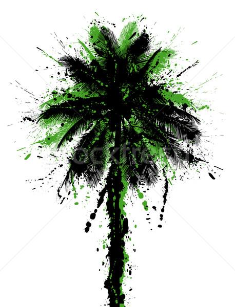 Cocotier arbre Palm vert encre tropicales Photo stock © Tawng