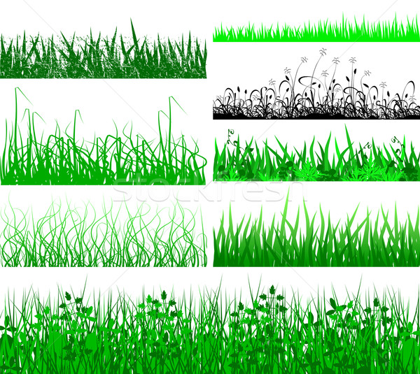 Grass fringes Stock photo © Tawng