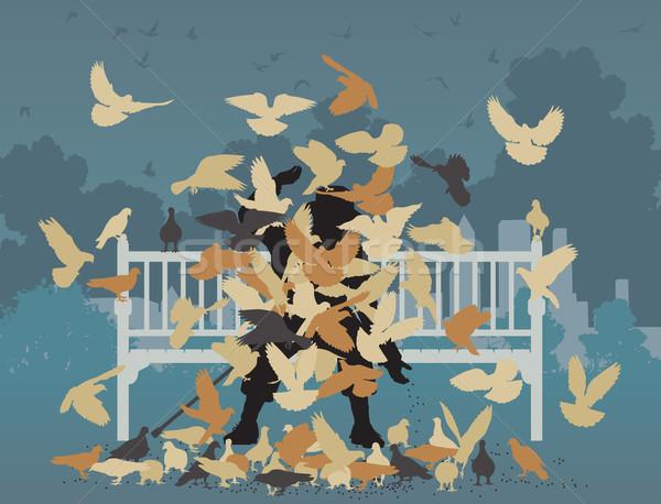 Pigeon park Stock photo © Tawng