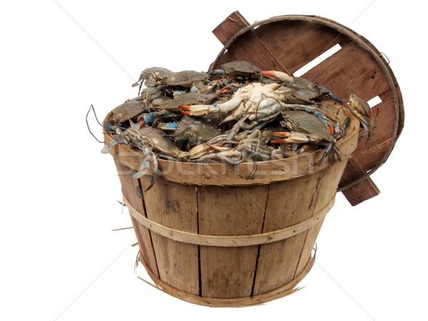 bushel basket of crabs 3 Stock photo © tdoes