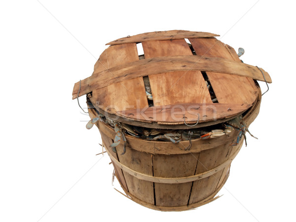 bushel basket of crabs 4 Stock photo © tdoes
