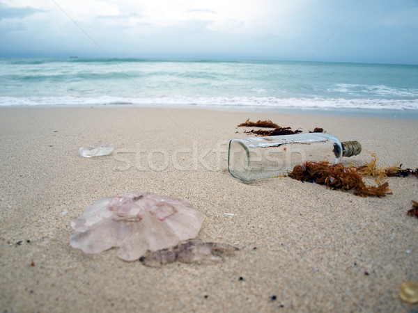 south beach surf with bottle Stock photo © tdoes