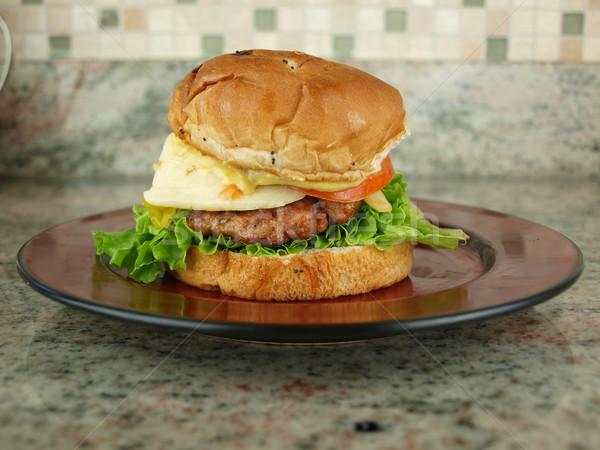 Burger sandviç marul domates soğan hardal Stok fotoğraf © tdoes