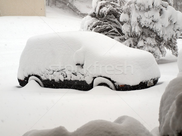 blizzard of 2010 - snow covered vehicle Stock photo © tdoes