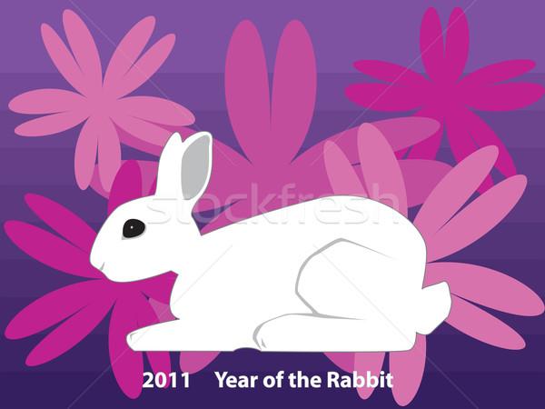 Nyúl ikon év 2011 fehér új Stock fotó © tdoes