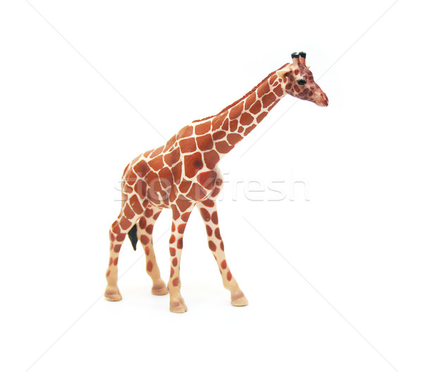 Isolated Toy Giraffe Stock photo © TeamC