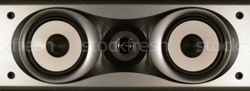 センター チャンネル スピーカー 孤立した 技術 黒 ストックフォト © TeamC