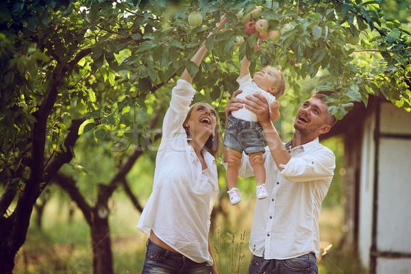Családok gyermek nyár kert szülők baba Stock fotó © tekso