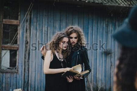 Bastante meninas posando rua belo cidade Foto stock © tekso
