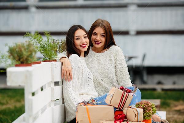два красивой девочек сидят скамейке Сток-фото © tekso