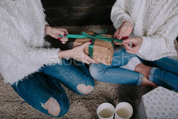 Dois belo meninas juntos presentes bastante Foto stock © tekso
