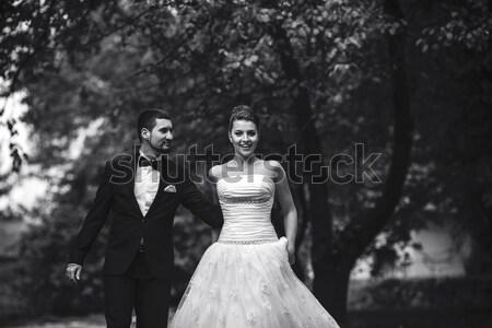 Güzel düğün çift poz silah park Stok fotoğraf © tekso