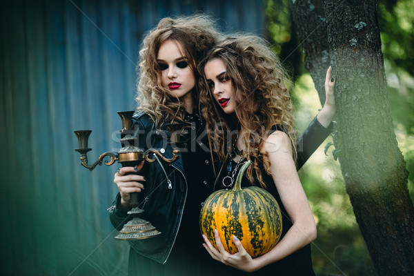 Stock photo: two vintage women as witches
