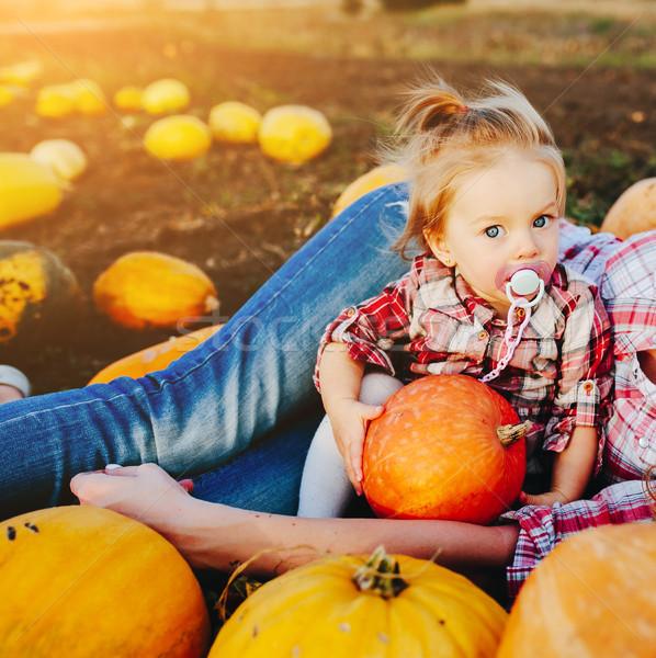 母親 娘 うそをつく カボチャ フィールド ハロウィン ストックフォト © tekso