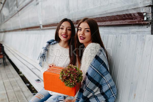 Dois belo meninas dom sessão Foto stock © tekso