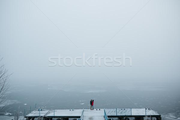 Mooie permanente pier bevroren Stockfoto © tekso