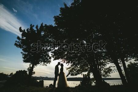 Gelin damat ayakta park bakıyor kadın Stok fotoğraf © tekso