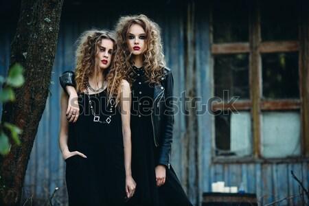 два красивой молодые девочек Платья позируют Сток-фото © tekso