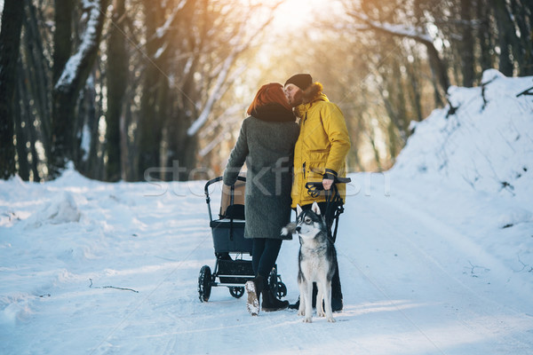 family walking with the stroller in the winter Stock photo © tekso