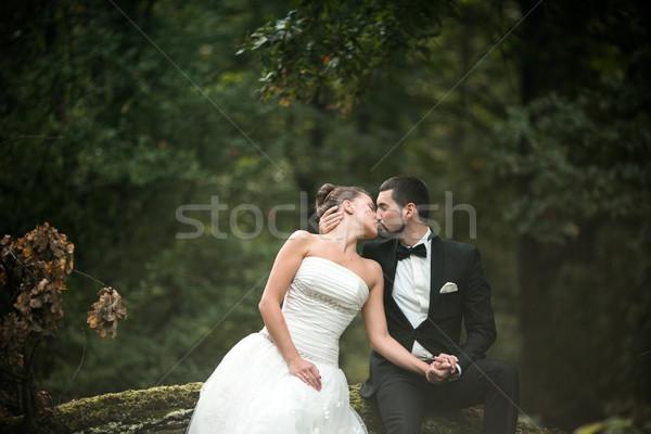 красивой свадьба пару сидят лесу женщину Сток-фото © tekso