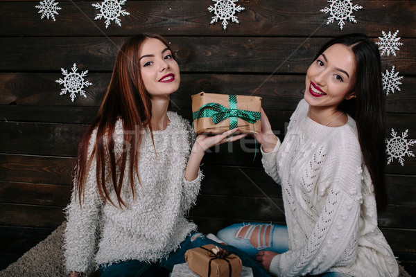 portrait of two beautiful girls at Christmas Stock photo © tekso