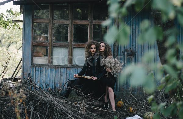 два Vintage Хэллоуин женщины фон костюм Сток-фото © tekso